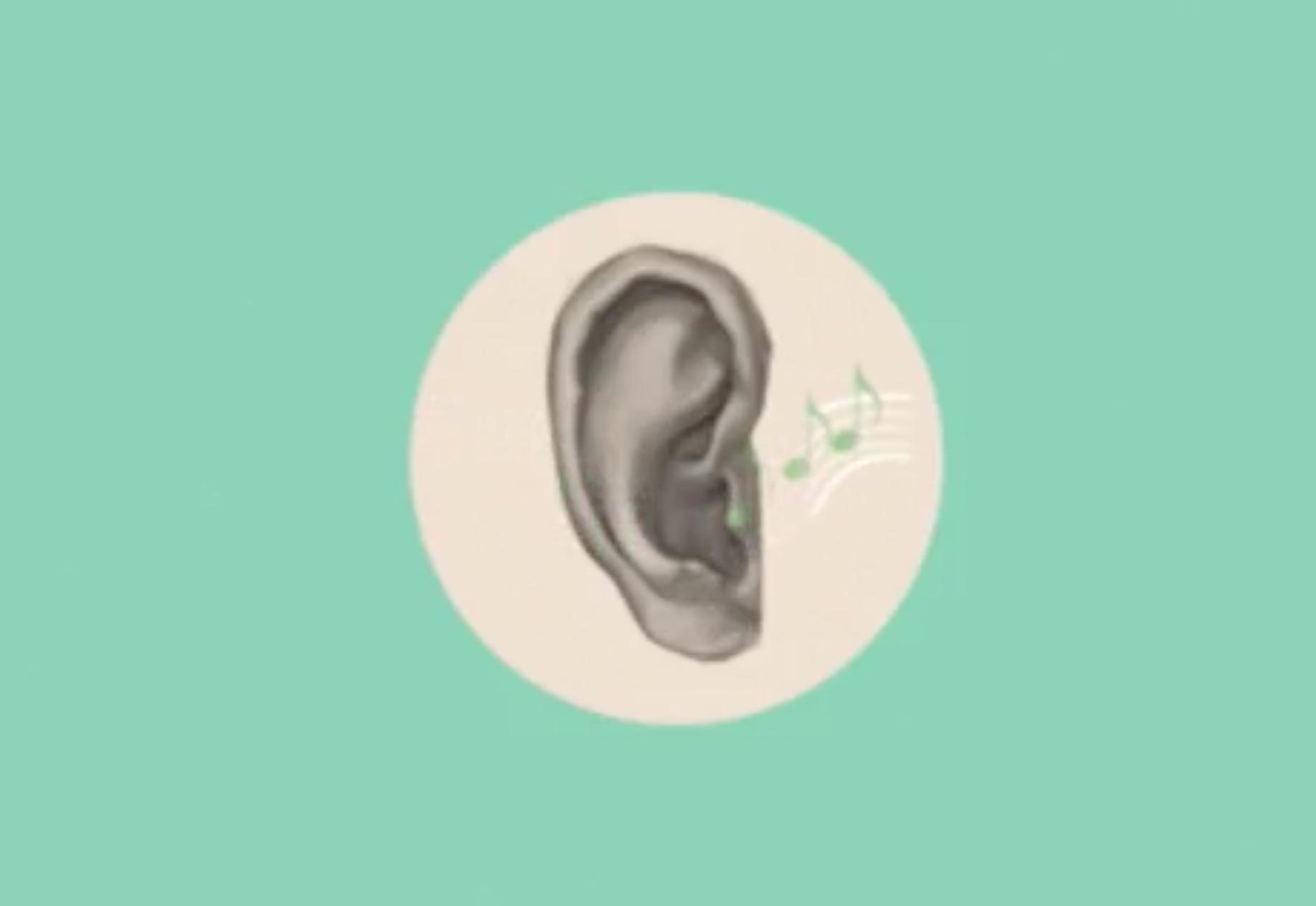 длина плохо анимационные картинки ухо проживаете